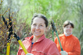 Gardeners working in garden — Stock Photo