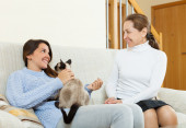 Daughter and mother gossiping on sofa — Stock Photo