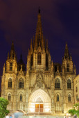 Evening view of Barcelona Cathedral   — Stock Photo