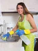 Happy young woman cleaning  furniture — Stockfoto