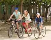 Family cycling in park — Stockfoto