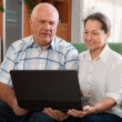 Happy mature couple  with computer — Stock Photo #64295167