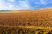 Idle field in Europe — Stock Photo