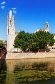 Collegiate Church and Gothic Cathedral in Girona — Stock Photo