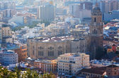 Malaga Cathedral and cityspace  — Photo