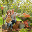 Happy parents and child   in garden — Stock Photo #66552849