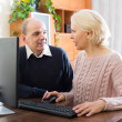 Senior couple using PC at home — Stock Photo #66554259