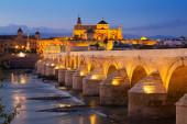 Roman bridge   in evening. Cordoba, Spain — Stock Photo