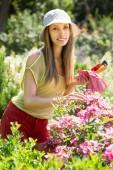 女人照顾植物 — 图库照片