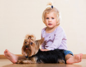 Positive child holding Yorkshire Terrier — Stock Photo