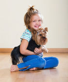 Female child playing with Yorkie — Stock Photo