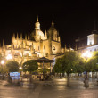 Midnight view of  Segovia Cathedral  — Stock Photo #69329237
