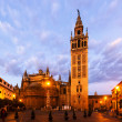 Morning view of  Seville Cathedral with Giralda  — Stock Photo #69330507