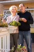 Smiling retired couple in patio — Stock Photo