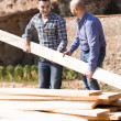 Workmen arranging building timber at farm — Stock Photo #69431659