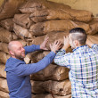 Two loaders handling sacks — Stock Photo #69431853