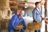 Farmers tedding straw in shed — Stock Photo