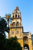 Bell tower of Cathedral. — Stock Photo