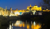Bridge and  Mosque-cathedral of Cordoba — Stock Photo