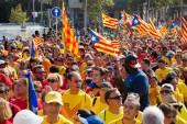 National Day of Catalonia — Stock Photo