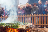 Cooking onion on bonfire during Calcotada — Stock Photo