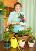 Woman holding a pot with flowers — Stock Photo