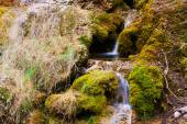 Mountains stream with moss stones — Stock Photo