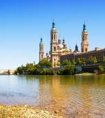 Cathedral from Ebro river — Stock Photo