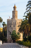 Pohled na věž Torre del Oro. Sevilla — Stock fotografie