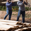 Workmen arranging building timber at farm   — Stockfoto #75046821