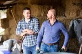 Farmers working in a barn — Stock Photo