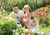 Young family gardening — Stock Photo