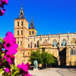 Cathedral of Astorga in summer — Stock Photo #83234052