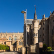 Cathedral and Episcopal Palace of Astorga — Stock Photo #83234094