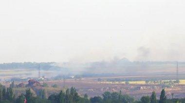 Fire in the village. Lights wheat field. FULL HD — Stock Video