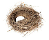 Birds nest with eggs on the white background. (isolated) — Foto de Stock