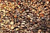 Texture of wood on the woodpile, background — Stock Photo