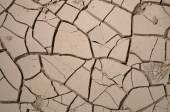 Cracks in dry and parched earth — Stock Photo