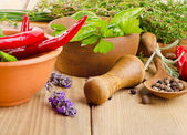 Herbs and peppers — Stock Photo