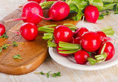 Fresh radishes on board. — Stock Photo