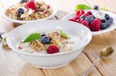 Bowl of muesli and yogurt — Stock Photo