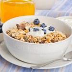 Muesli with yogurt .Traditional healthy breakfast . — Stock Photo #55502497