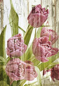 Pink tulips bouquet . — Stock Photo
