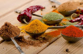 Dried spices and chilli . — Stock Photo