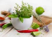 Fresh herbs and  chili peppers — Stock Photo