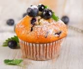One Blueberry muffin — Stock Photo