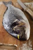 Sea bream on  cutting board — Stock Photo