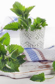 Fresh raw mint leaves  — Stock Photo