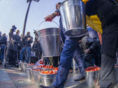 Activists carry buckets of tomatoes — Stock Photo