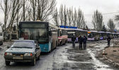 Convoy of busses for refugees — Stock Photo